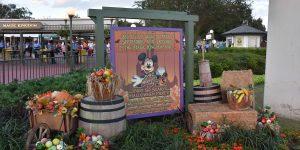Halloween im Disneyworld