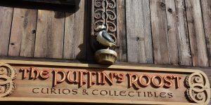 Puffins im Disneyworld