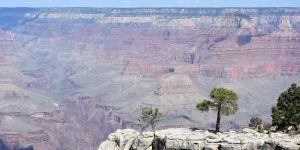 Weite Landschaft am Grand Canyon