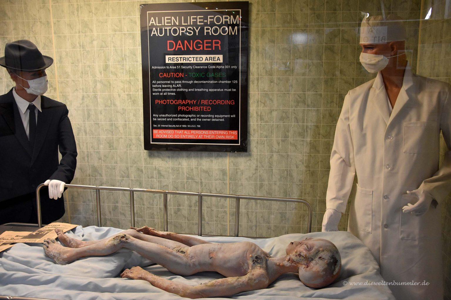Autopsie eines Alien
