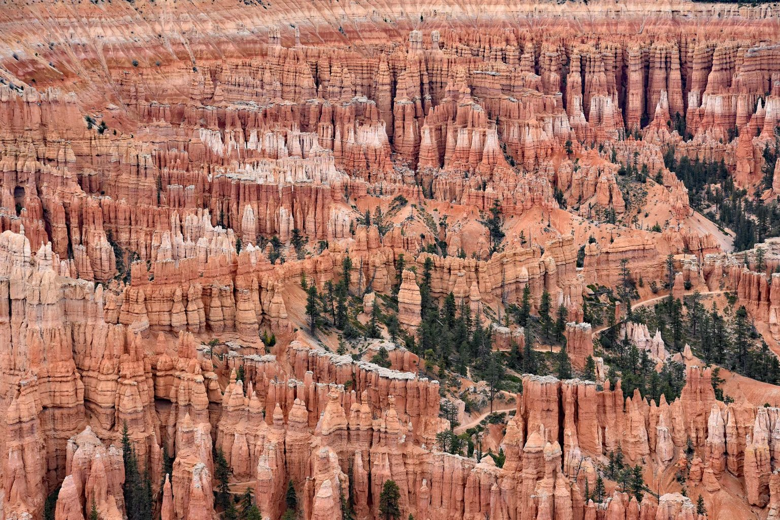 Ausblick am Bryce Point