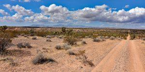 Blick nach Nevada