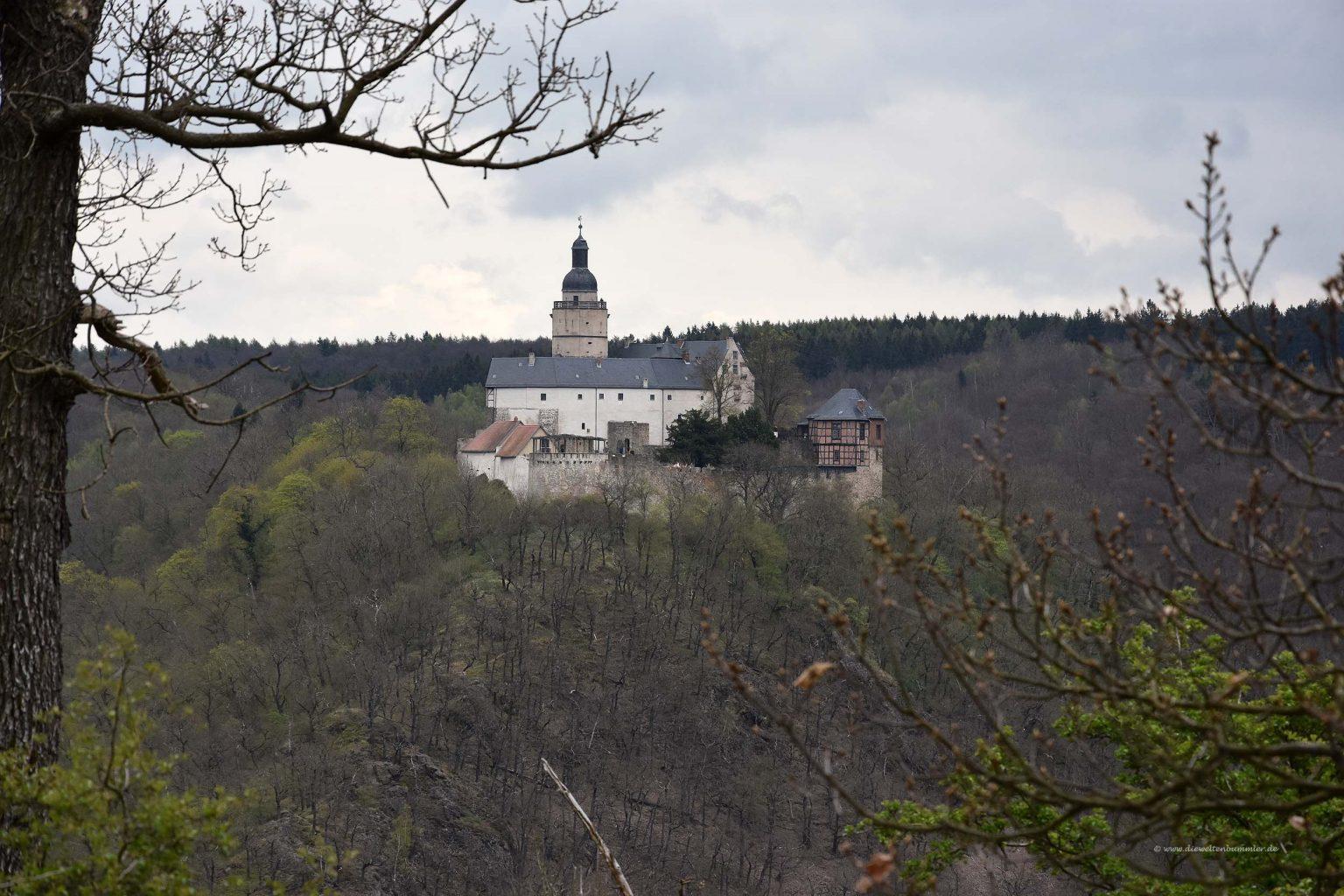 Burg Falkenstein über das Selkektal hinweg