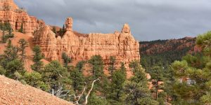 Wanderweg im Red Canyon in Utah