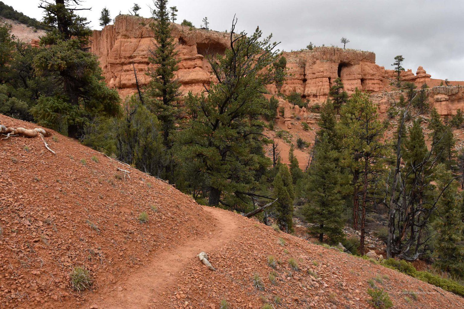 Wanderweg durch den Canyon