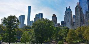 Spaziergang durch den Central Park in New York
