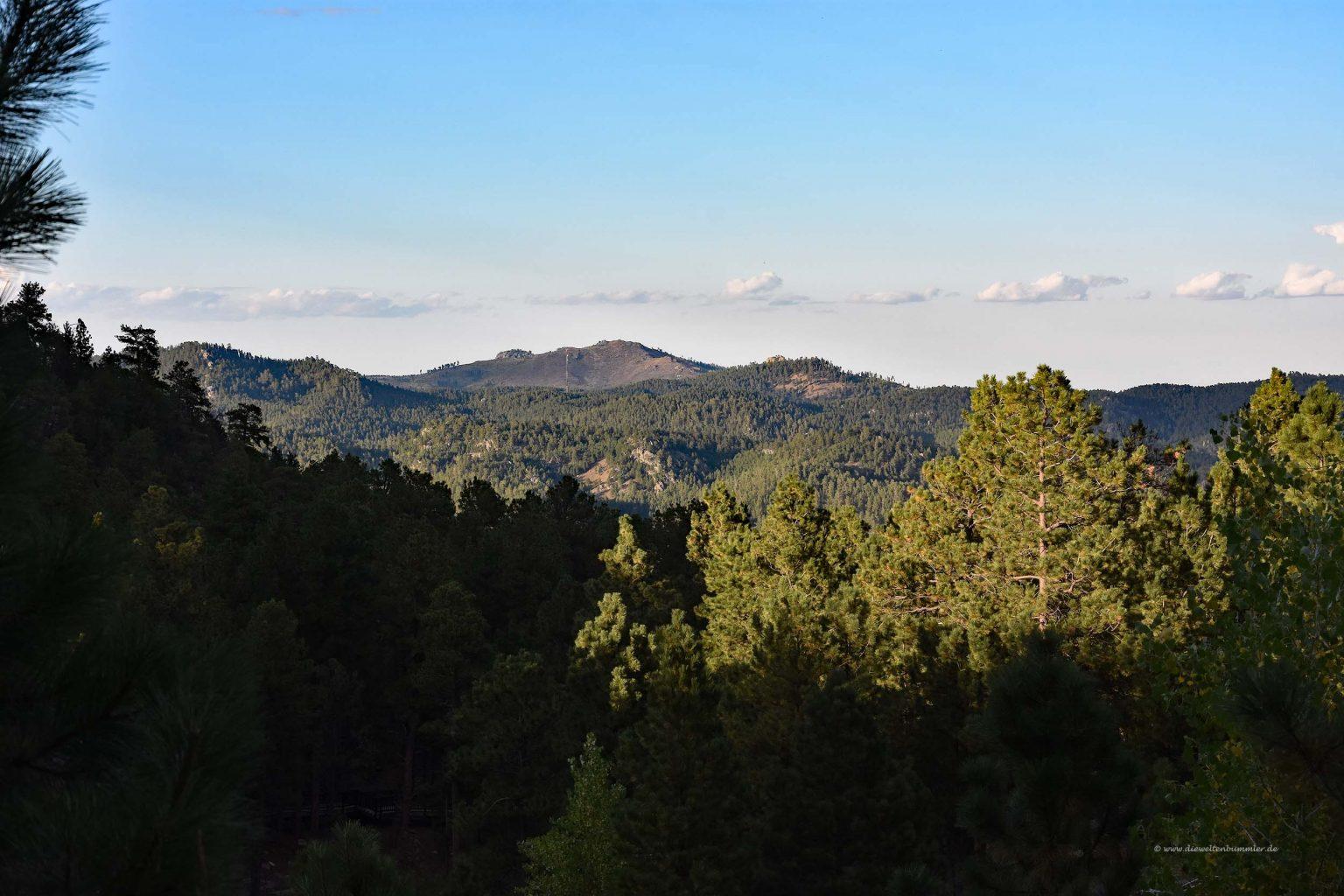 Landschaft rund um Mount Rushmore
