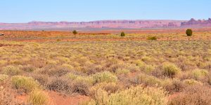 Weite Landschaft von Arizona