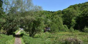 Malerisches Eifgenbachtal