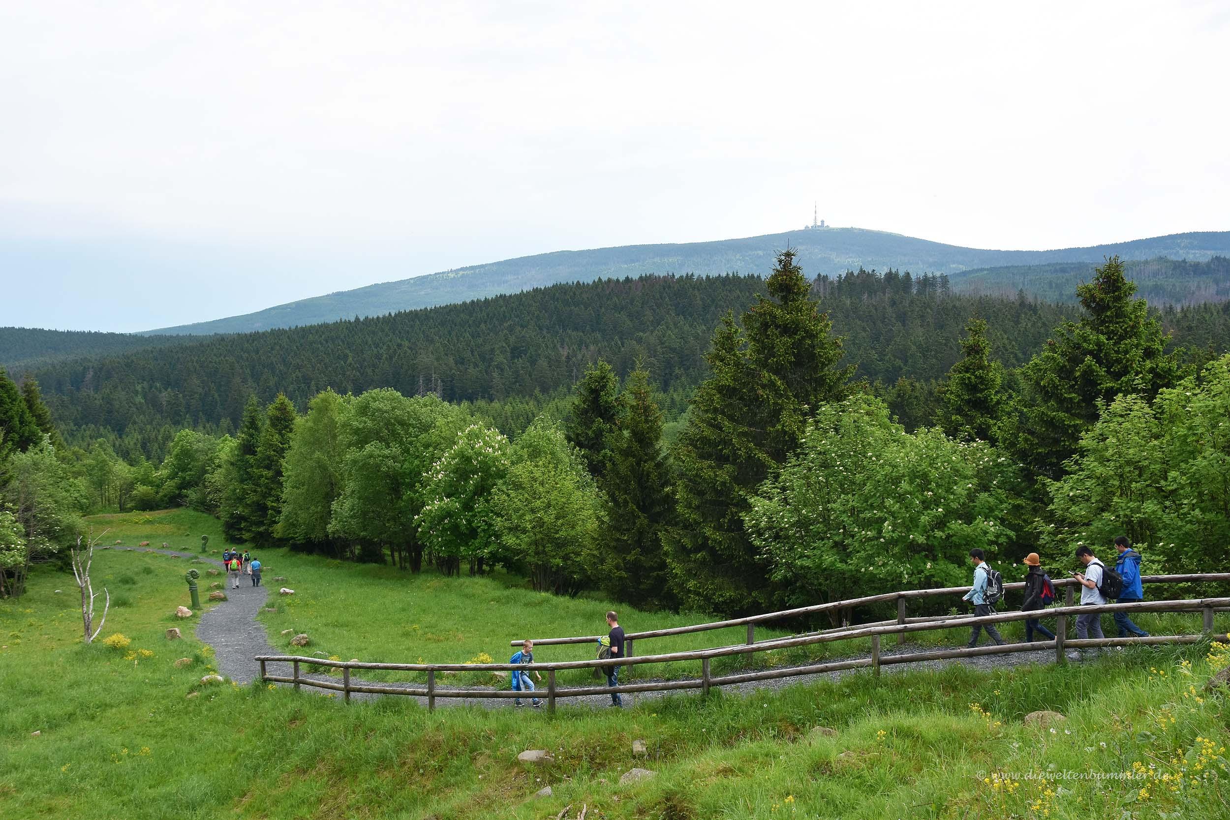 Wanderweg vom Torfhaus zum Brocken