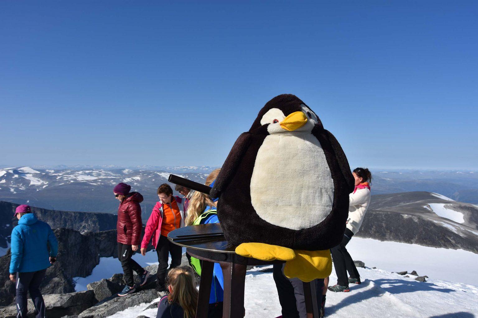 Pingu auf dem Galdhoppigen