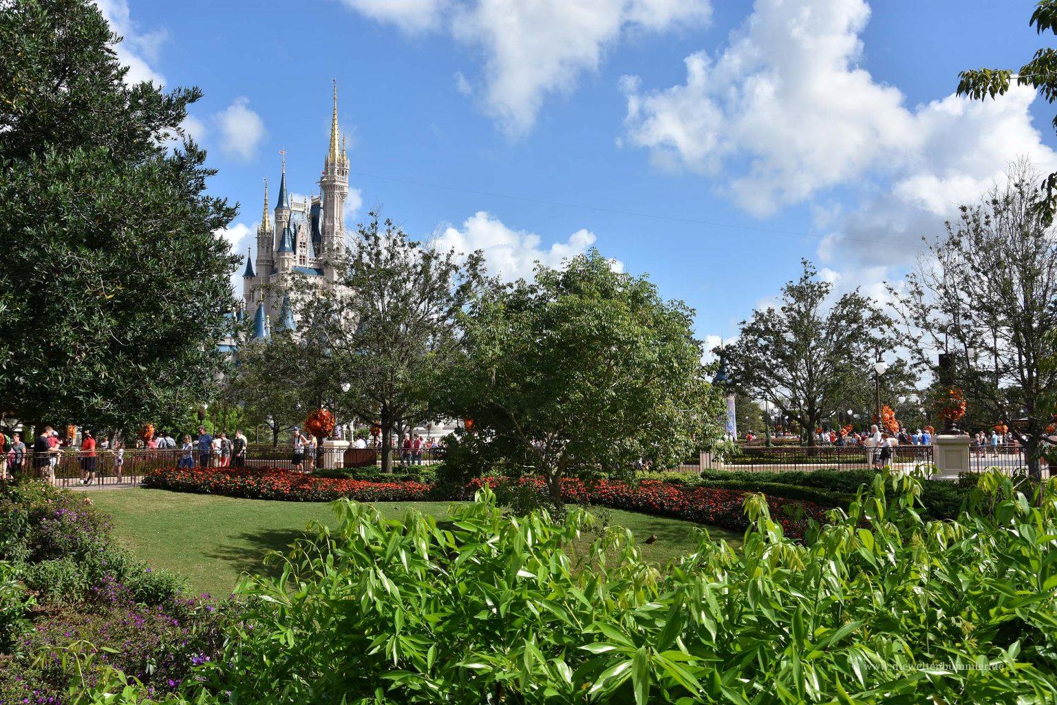 Viel Grün im Disneyworld