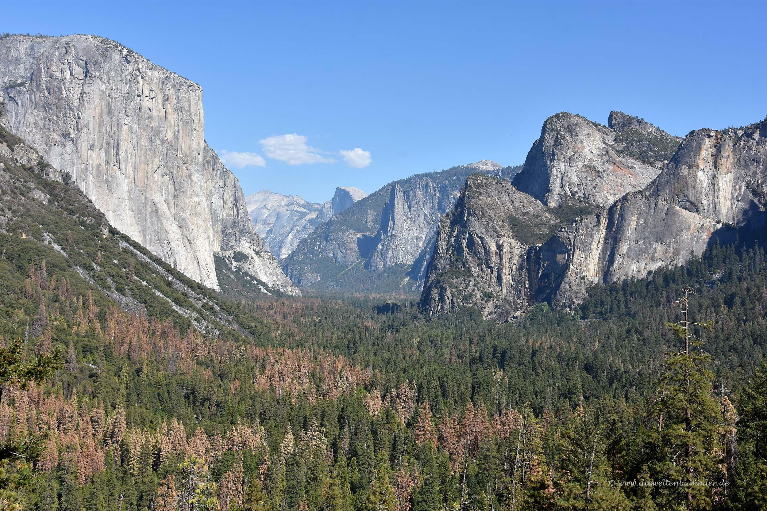 Blick in das Yosemite-Tal