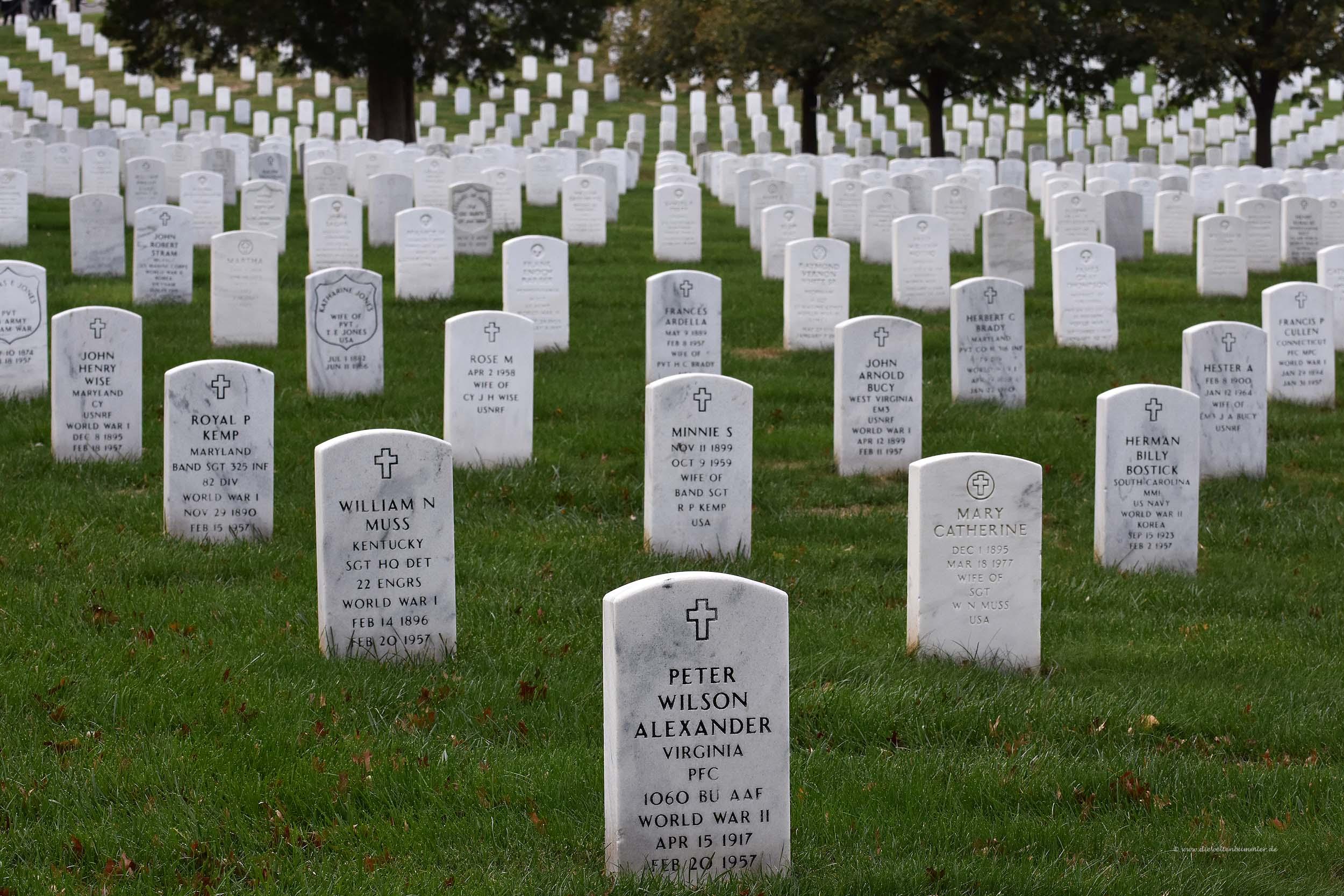 Unglaublich viele Grabsteine