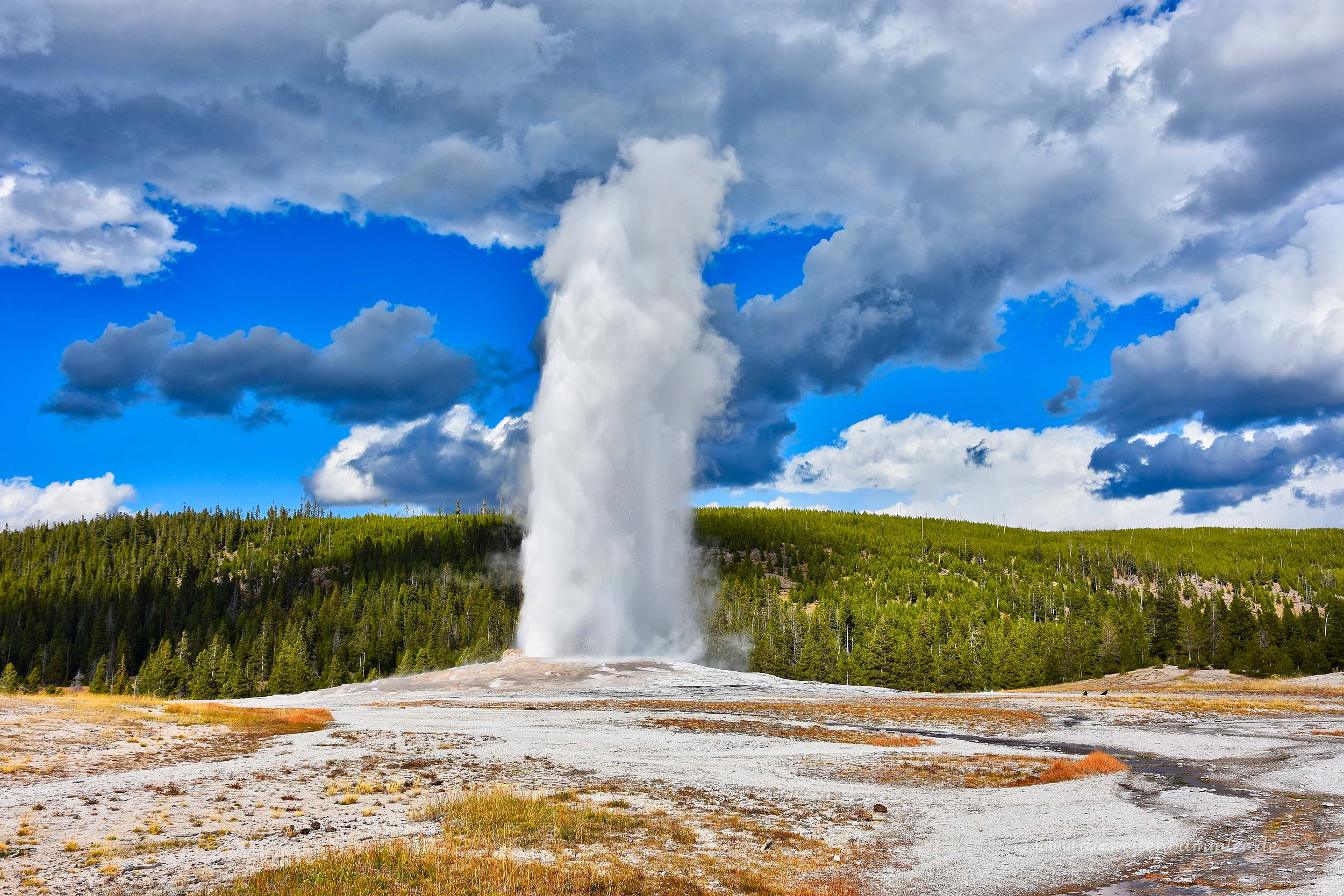 Old Faithful-Geysir