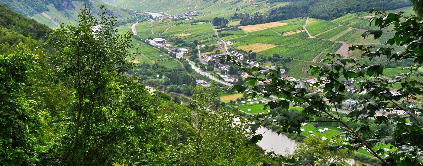 Ausblick nach Enkirch