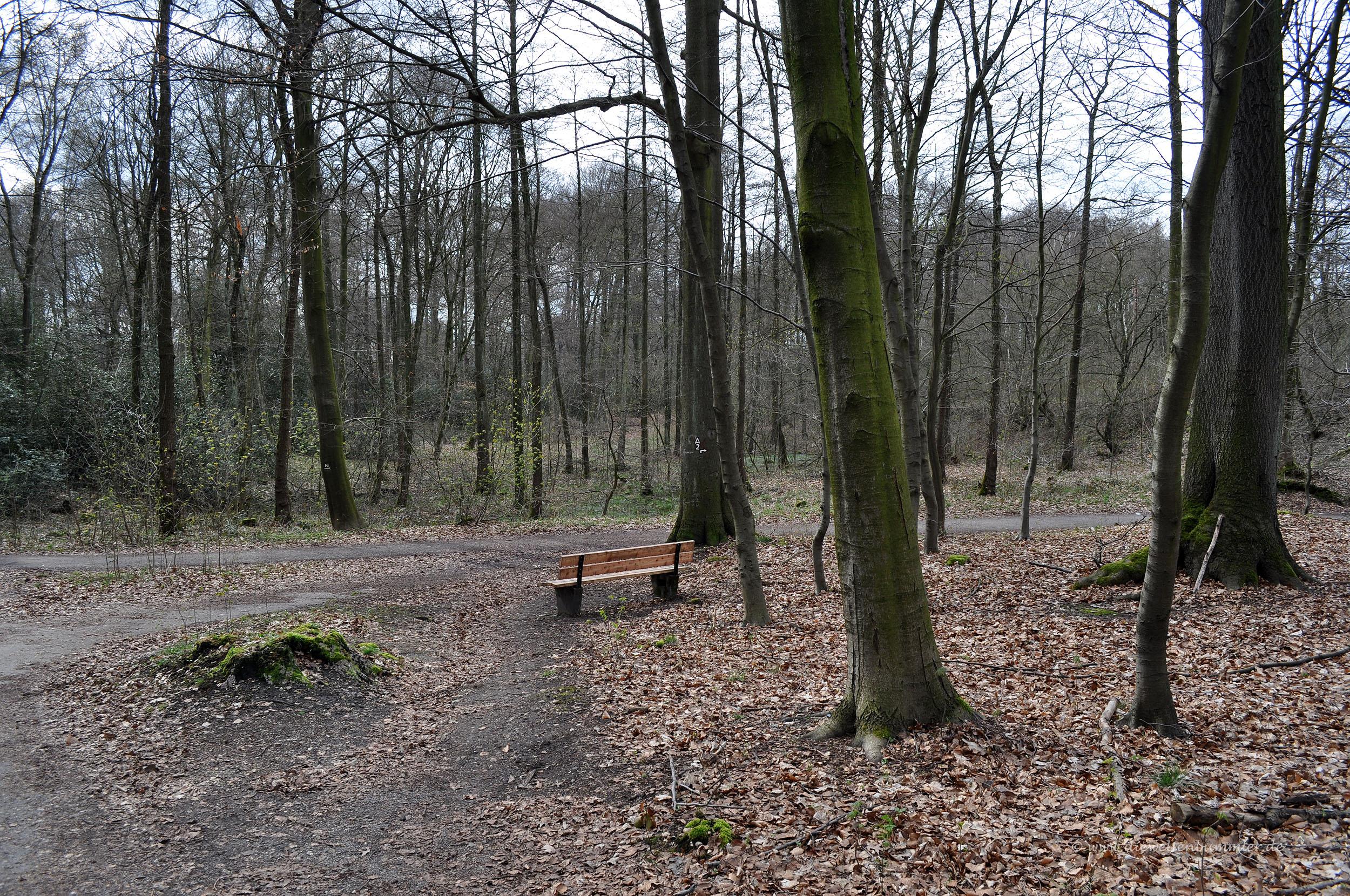 Duisburger Stadtwald