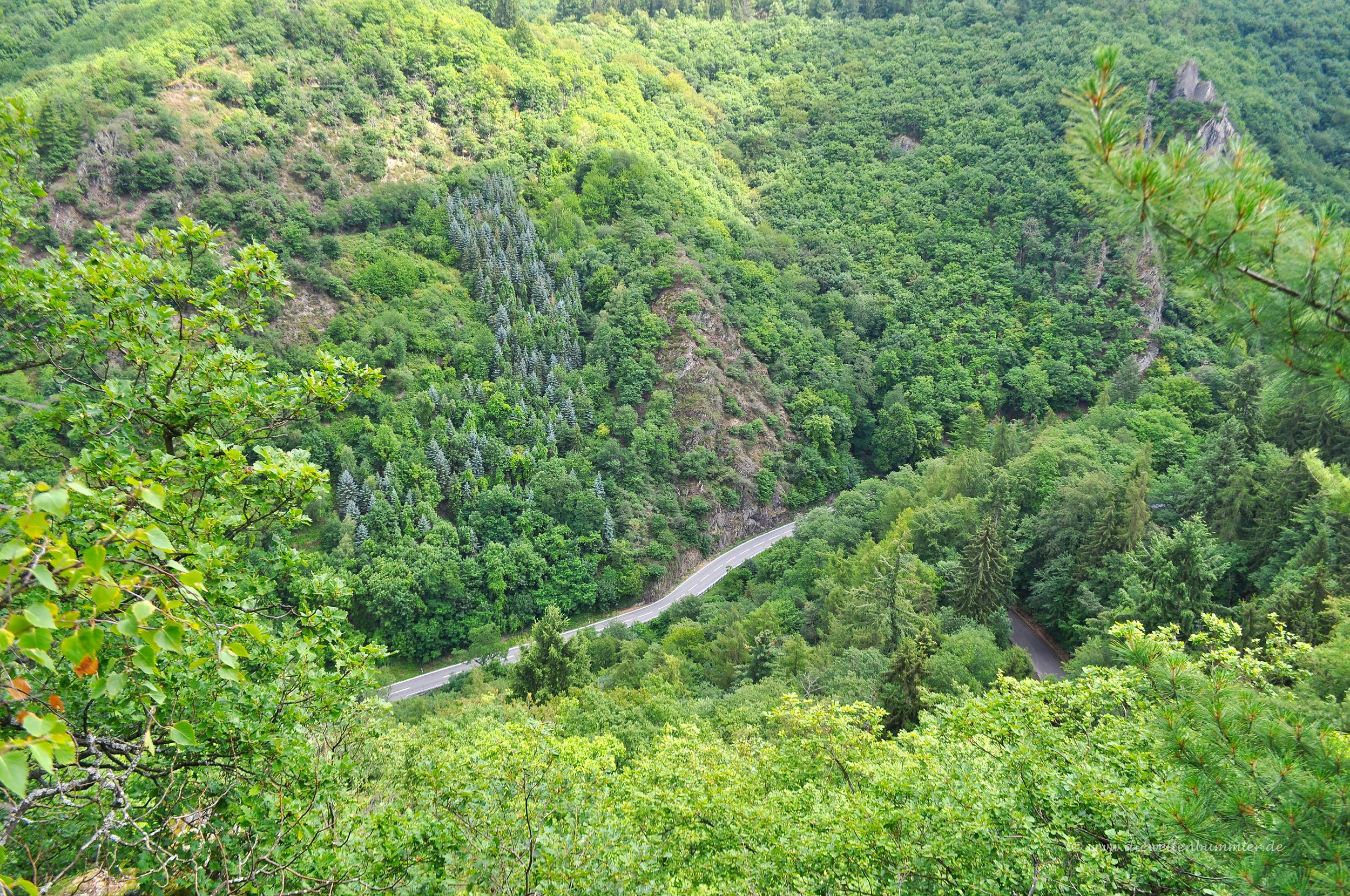 Einsame Straße in grüner Umgebung