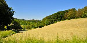 Hügeliges Deilbachtal