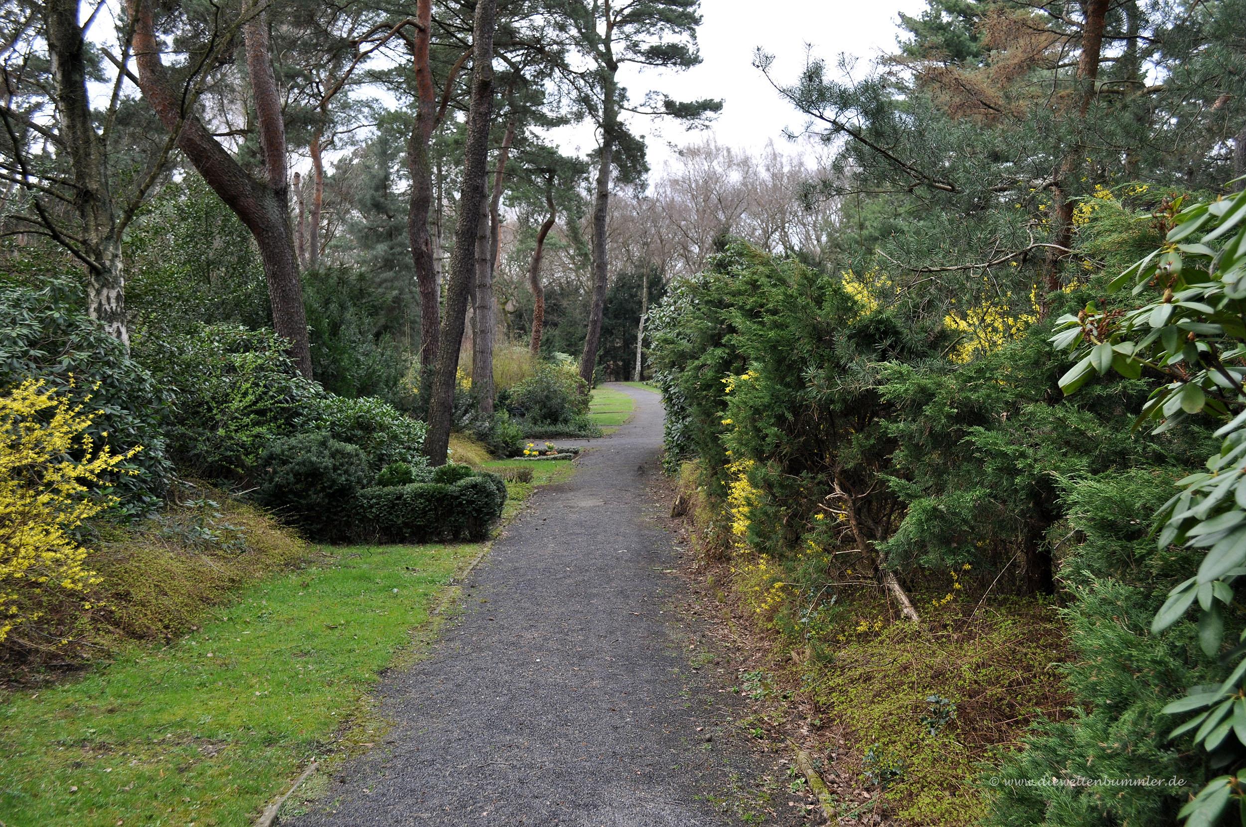 Spaziergang auf dem Friedhof