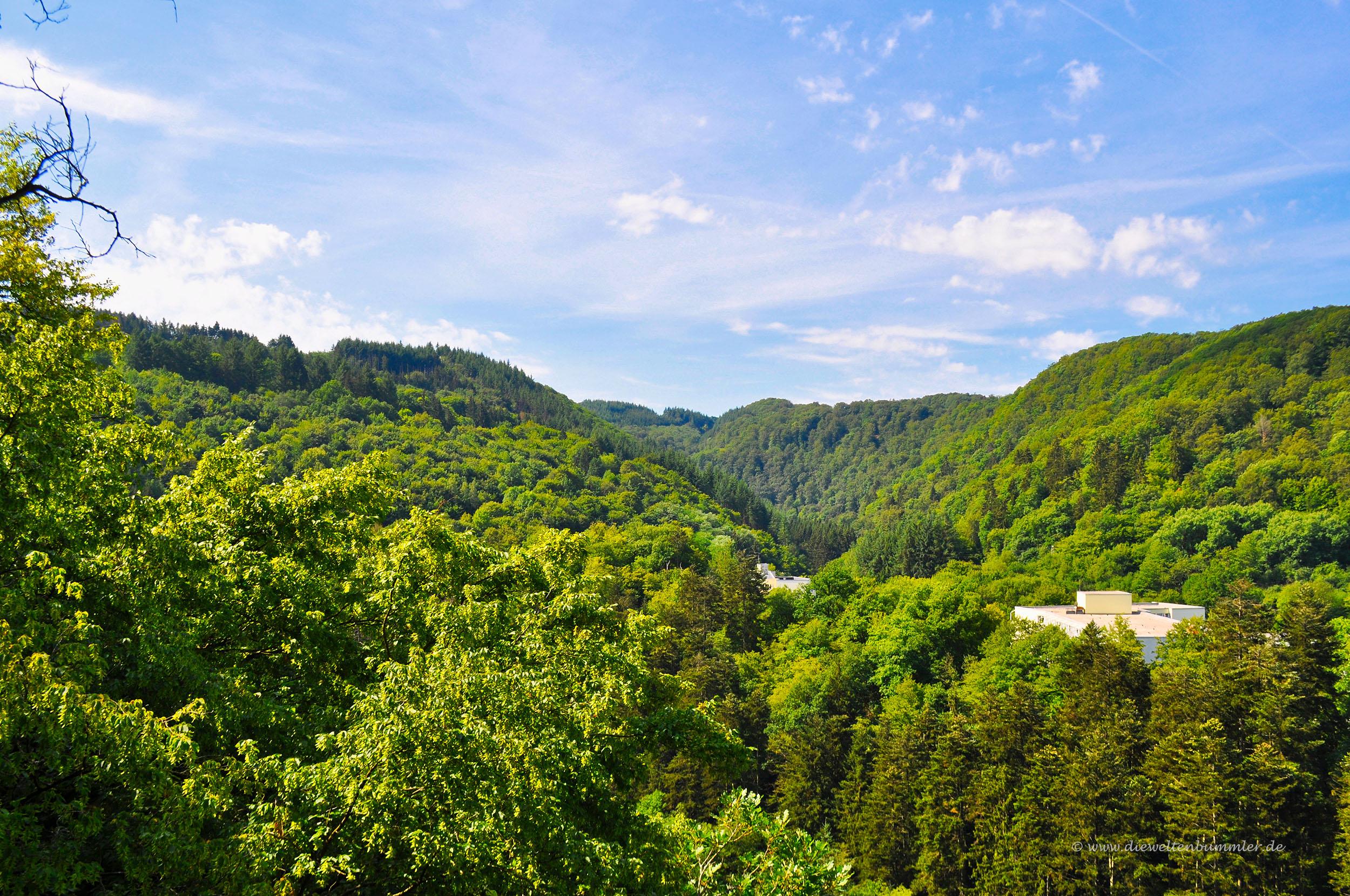 Waldreiche Region in der Vulkaneifel