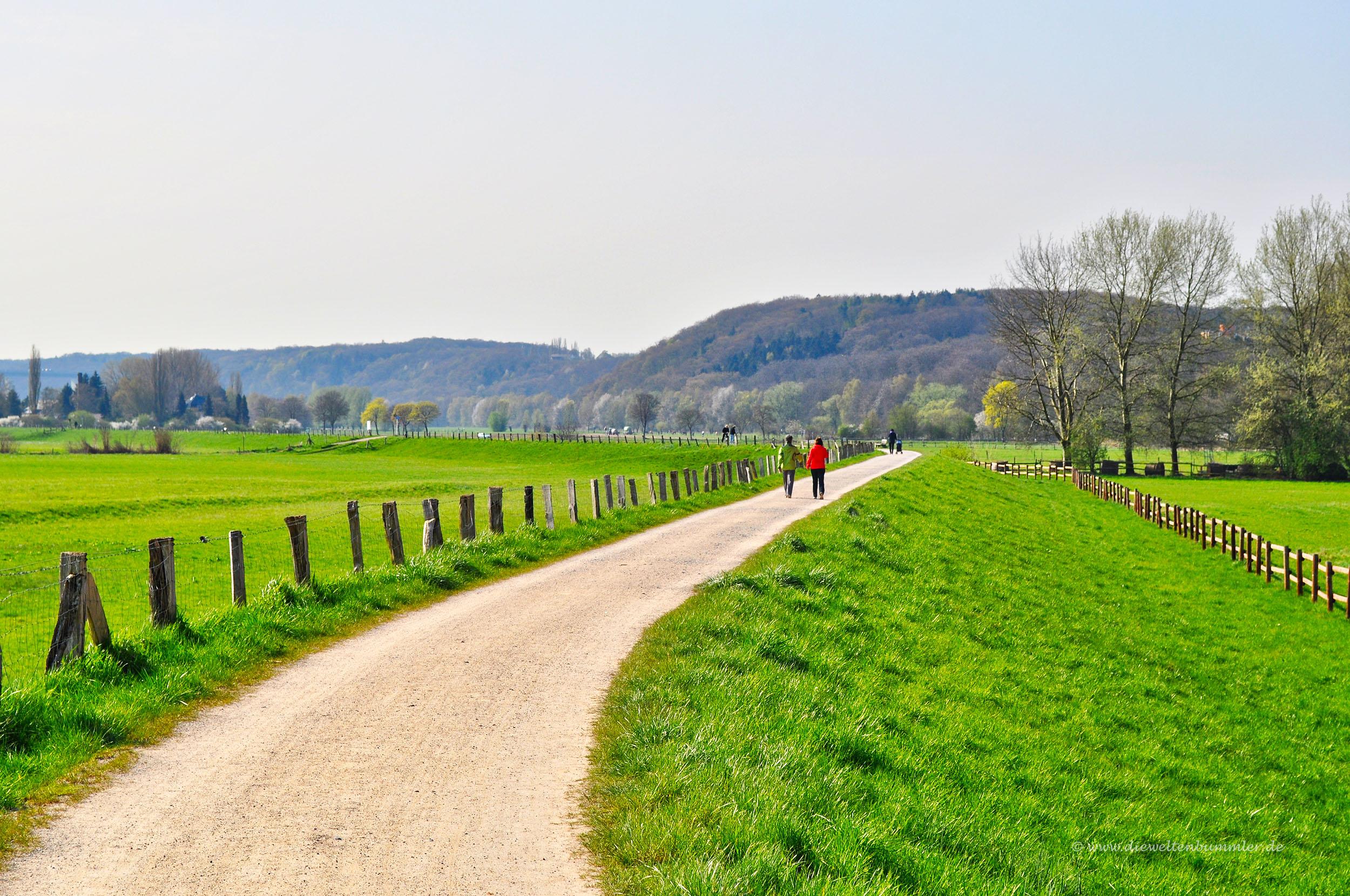 Wanderung auf dem Ruhrdeich