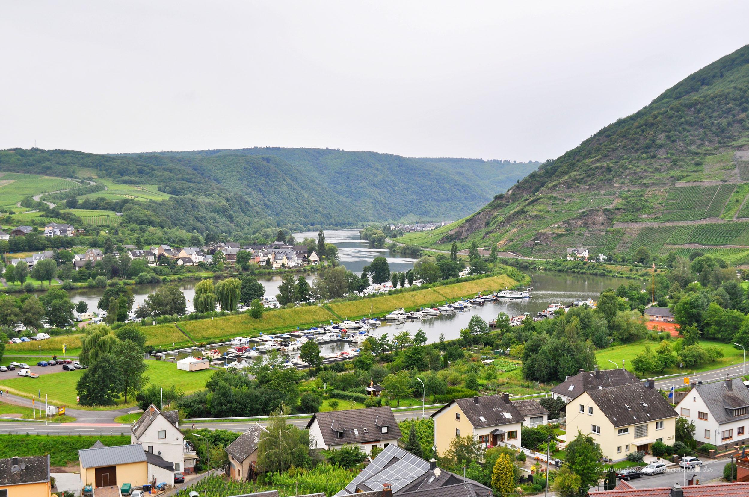 Wanderung oberhalb von Senheim