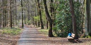 Wanderweg im Duisburger Stadtwald