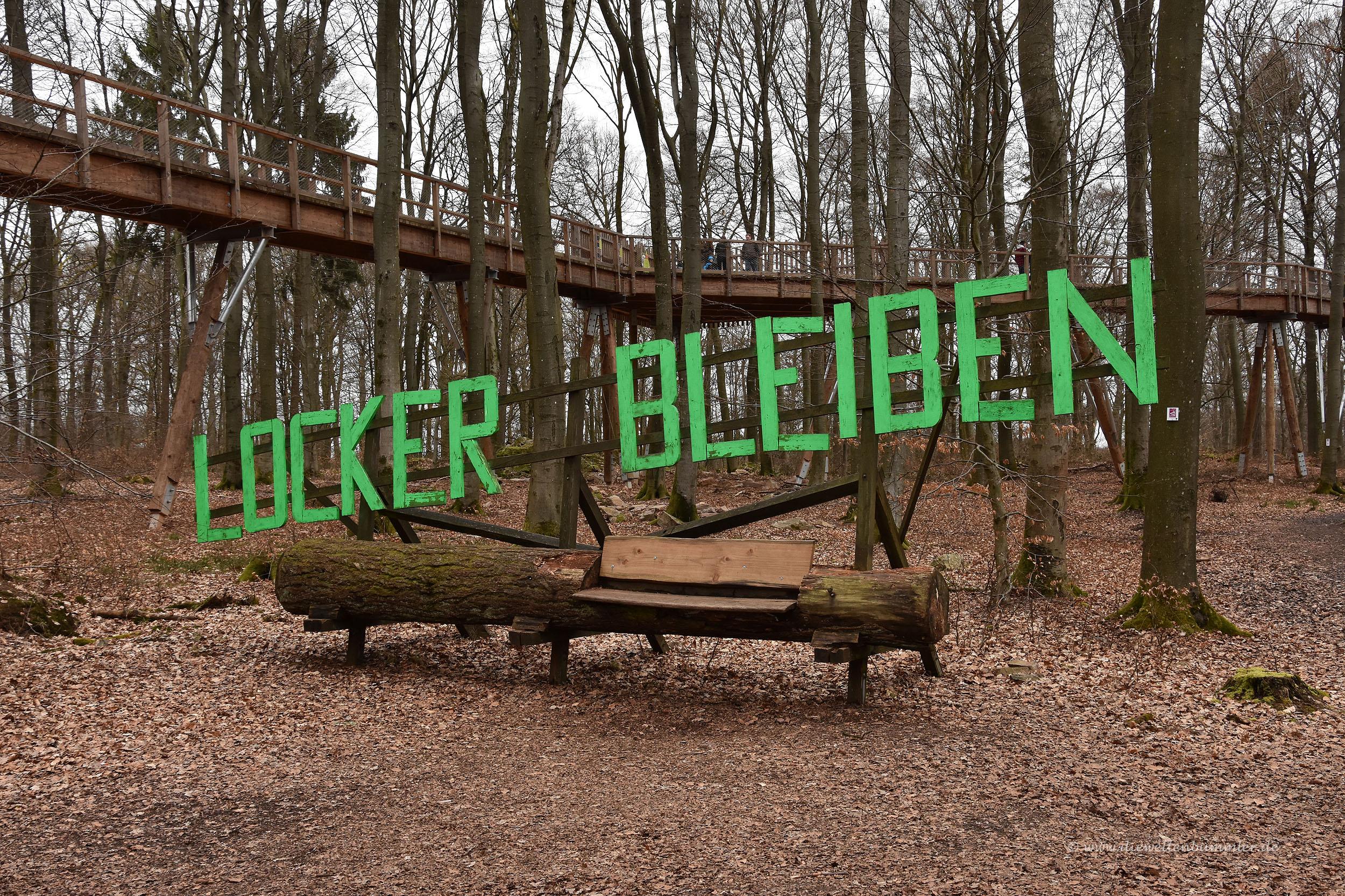 Offensichtlich Kunst im Wald