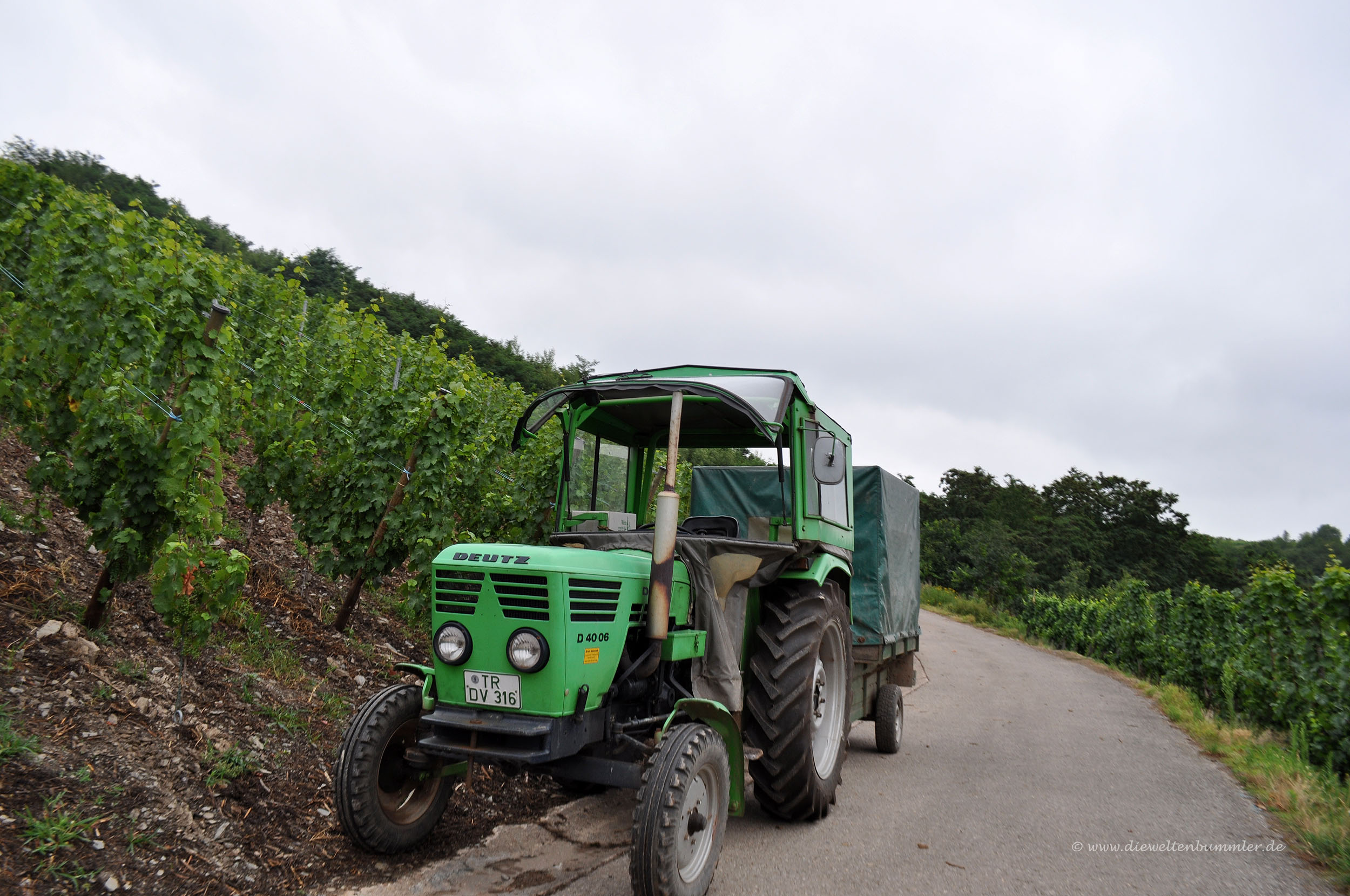 Traktor eines Winzers