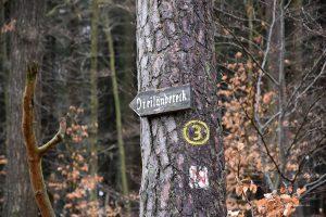 Waldweg zum Dreiländereck