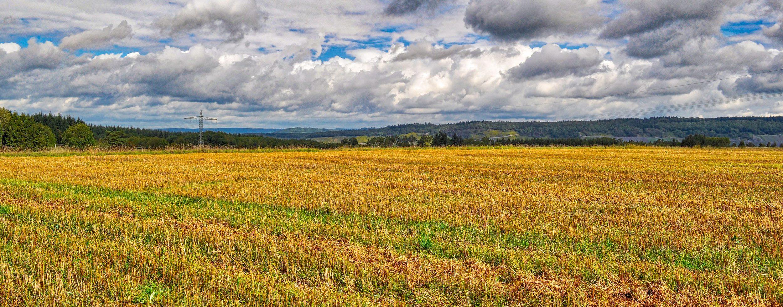 Weite Felder oberhalb der Mosel