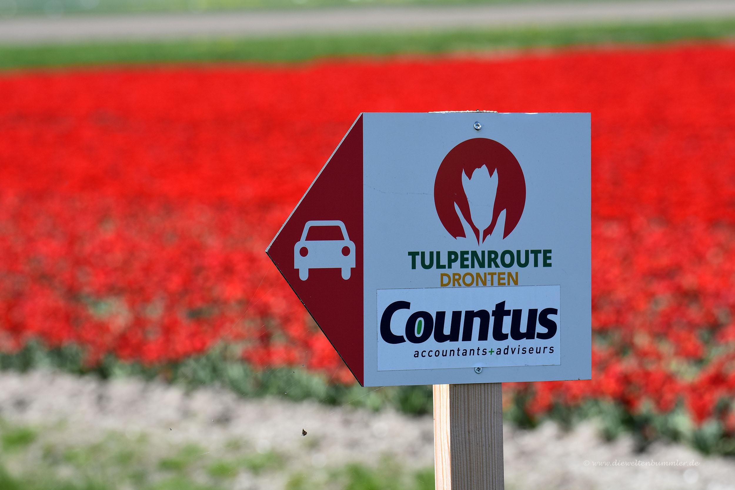 Wir folgten der Tulpenroute