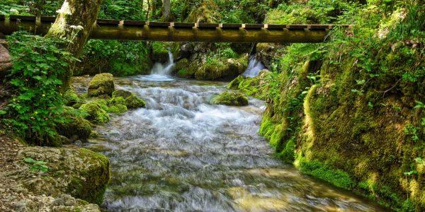 Kleiner Fluss Kamniška Bistrica