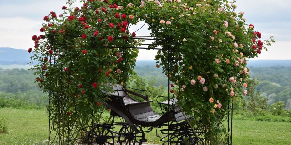 Kutsche im Schlosspark
