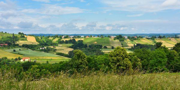 Landschaft im östlichen Slowenien