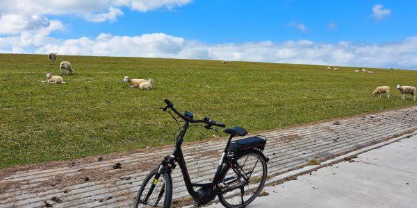 Mit dem E-Bike am Deich