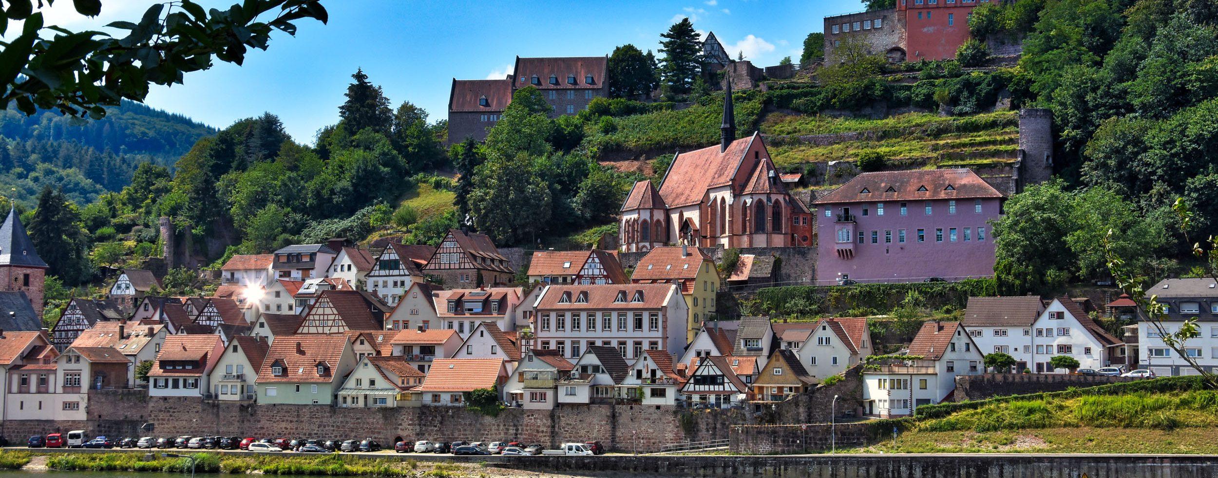Blick über den Neckar auf Hirschhorn