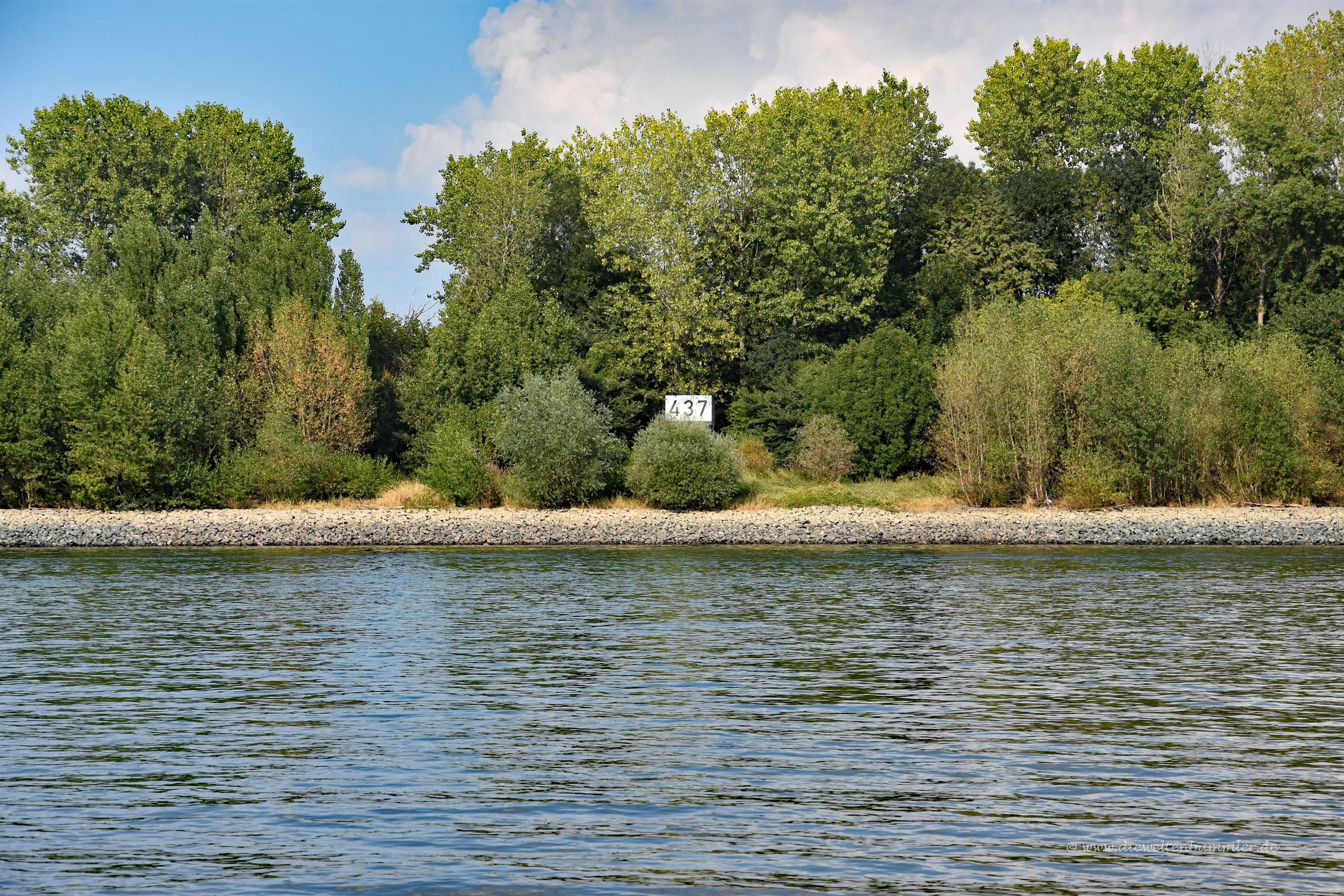 Dreiländereck im Rhein