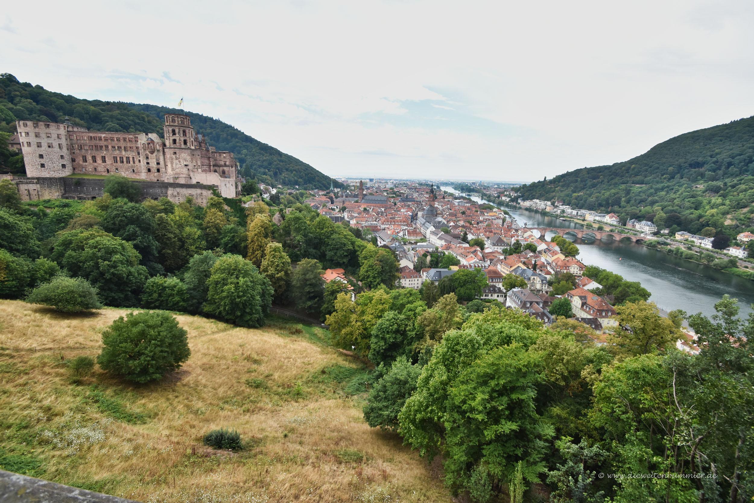 Heidelberg und das Schloss