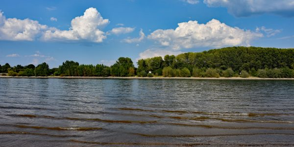 Rheinkilometer 437