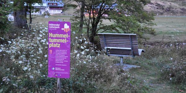 Hummeltanzplatz