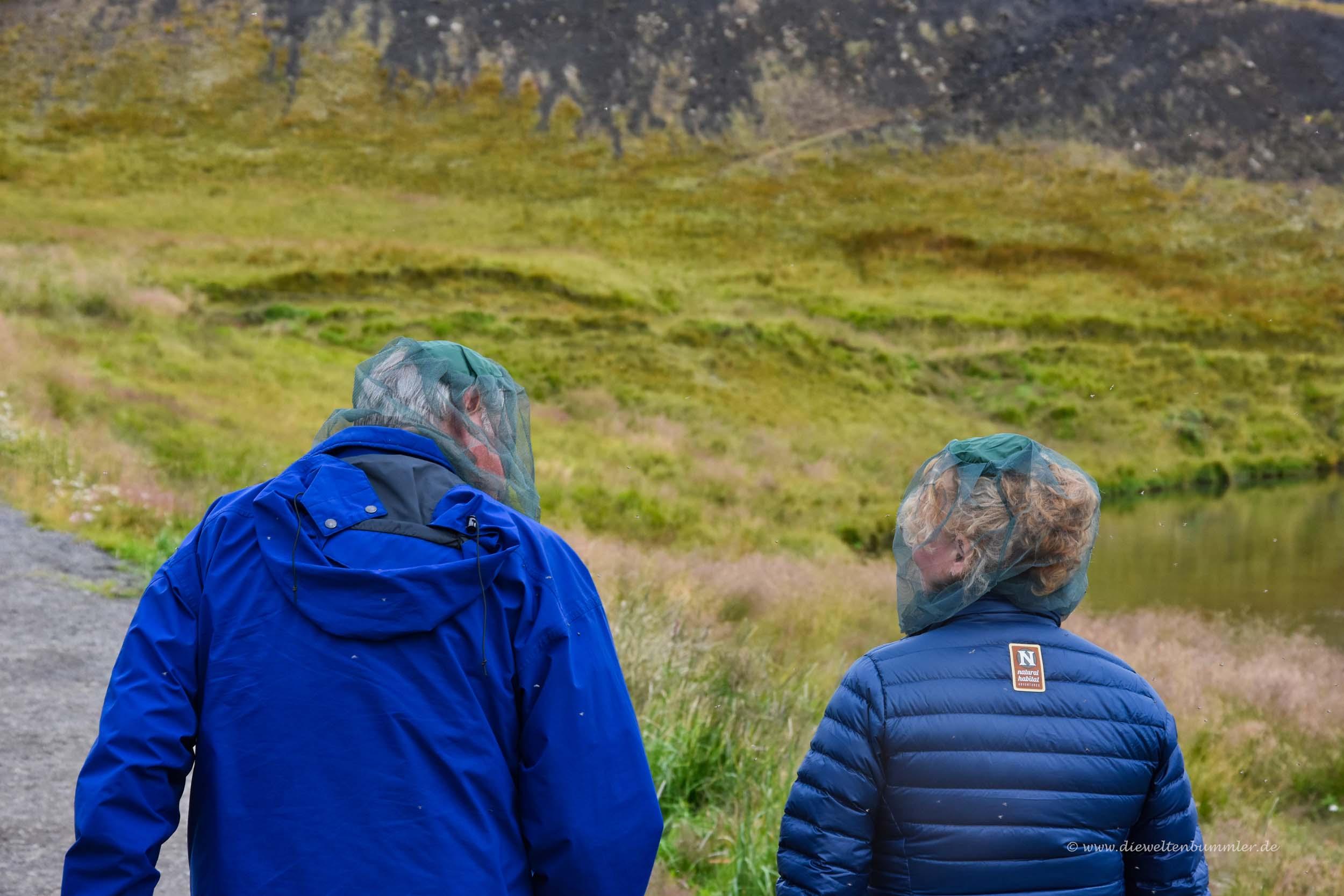 Idealer Mückenschutz auf Island