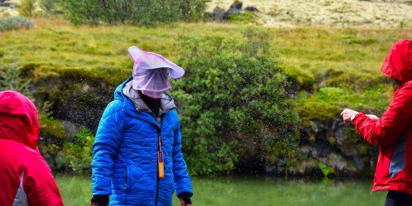 Tourist mit Mückenschutz am Mývatn