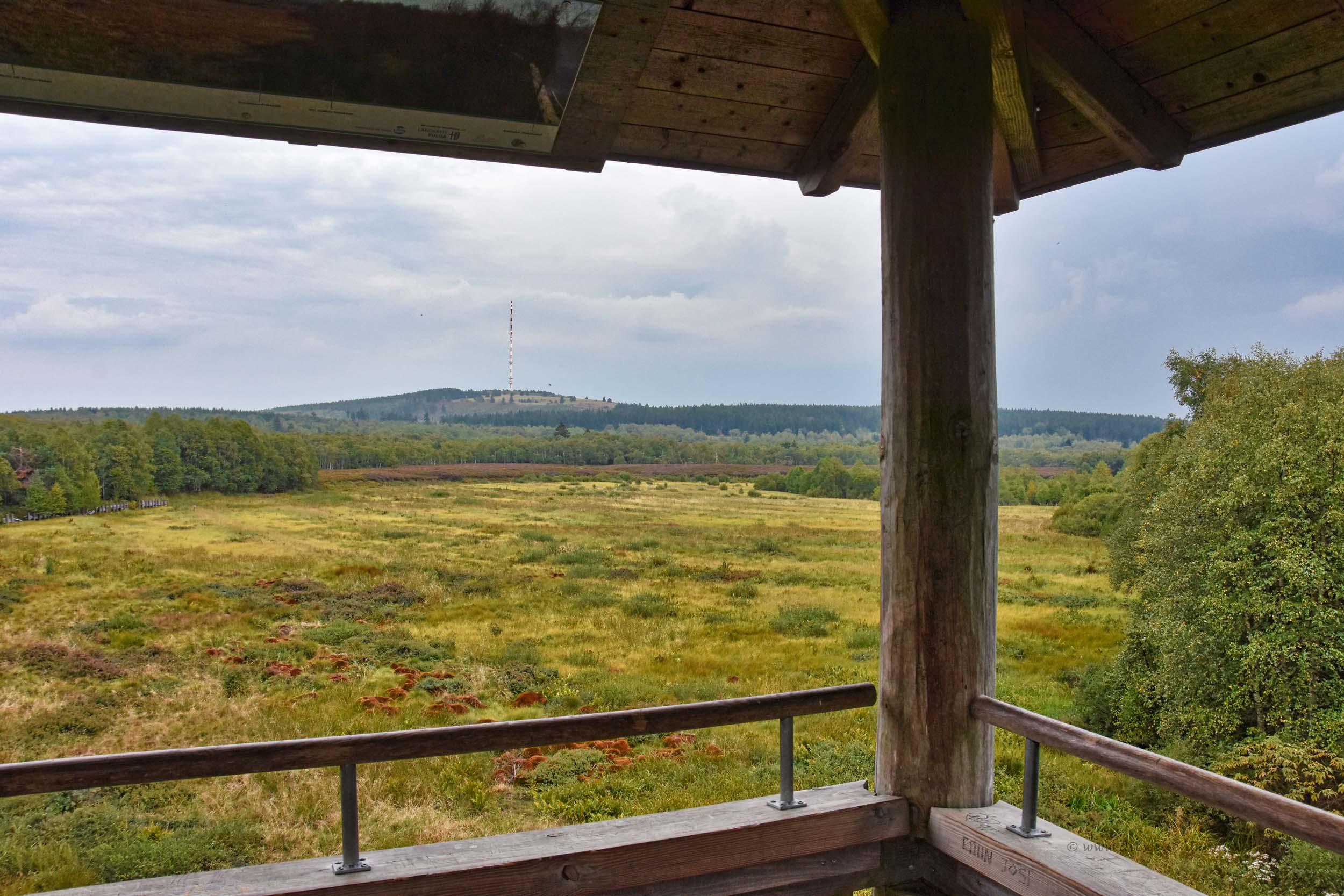 Ausblick vom Aussichtsturm Rotes Moor