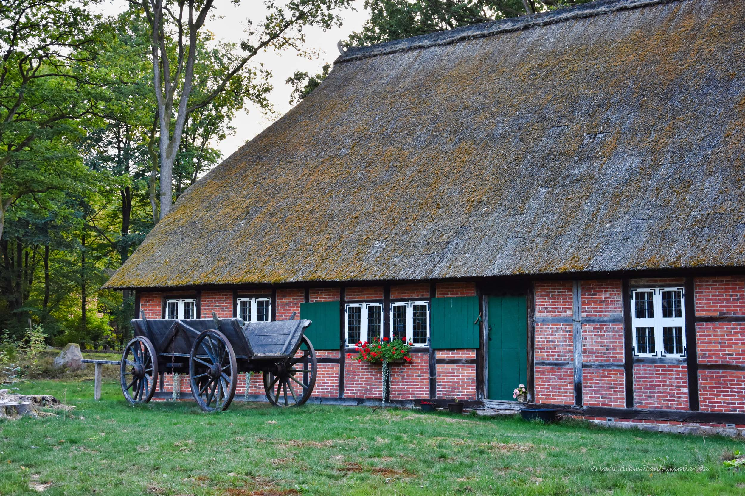 Fachwerkhaus mit Reetdach in Wilsede