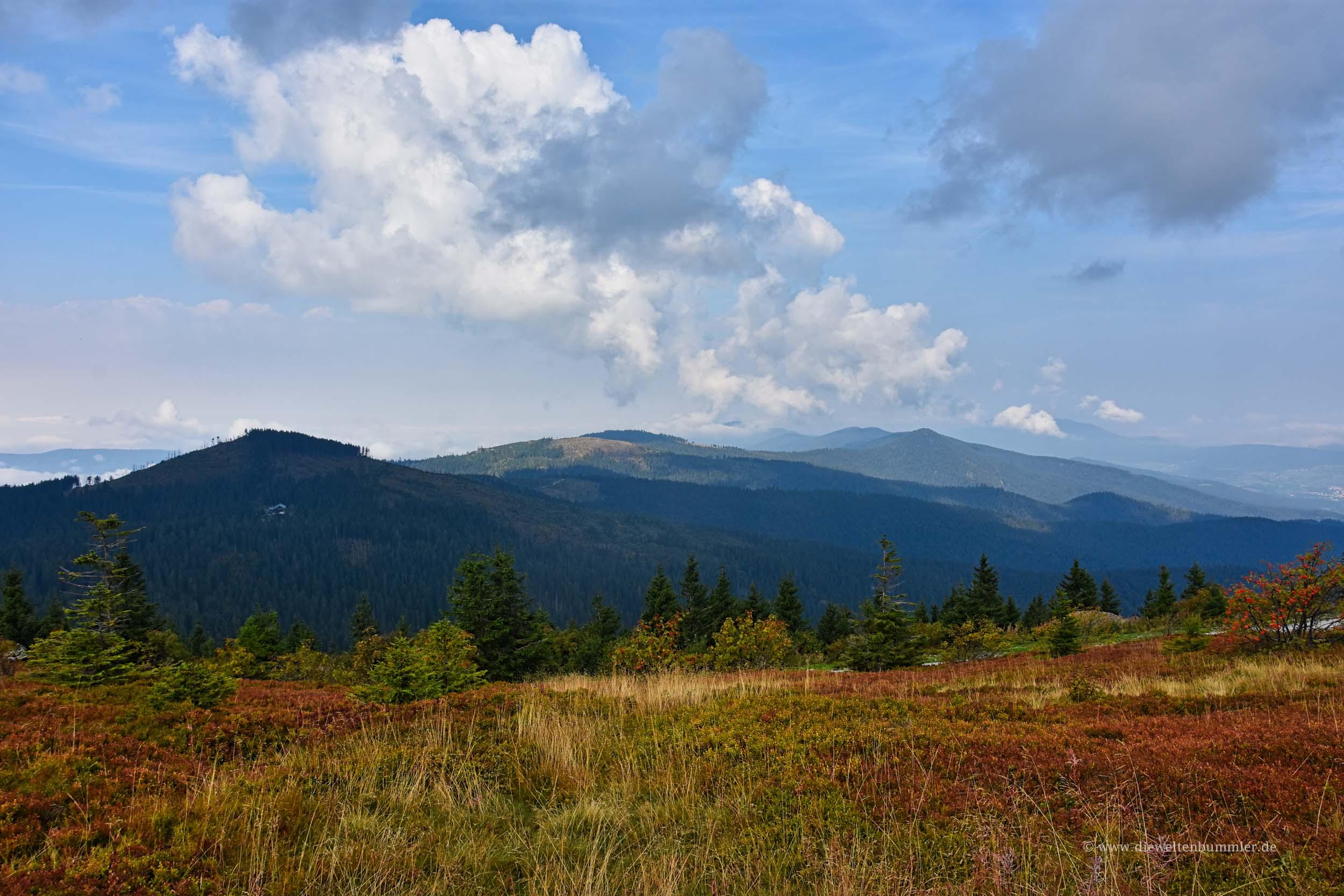 Gipfel im Bayerischen Wald
