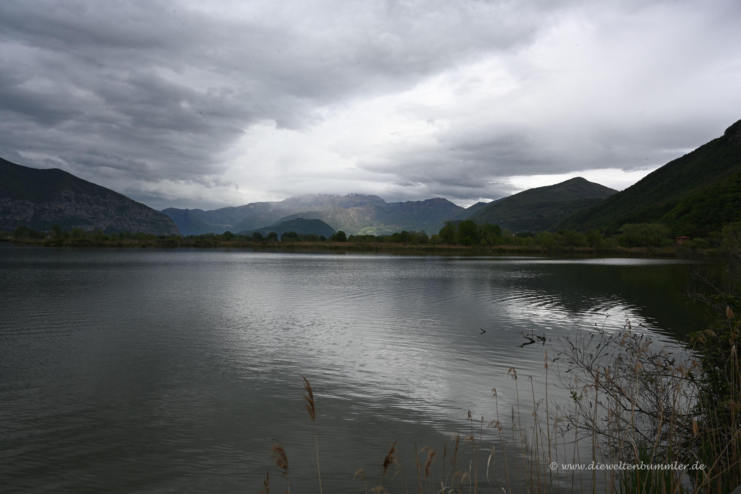 Blick vom Naturreservat zu den Alpen