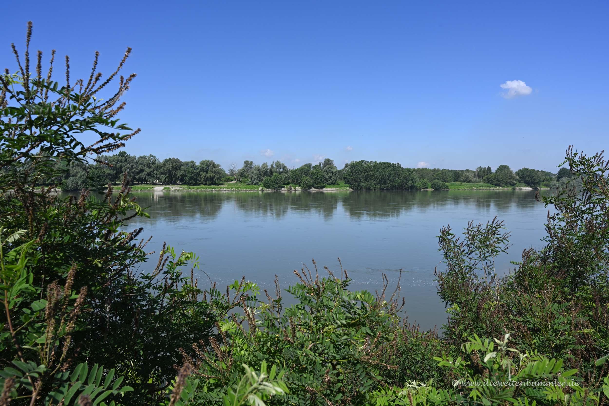 Der Fluss Po