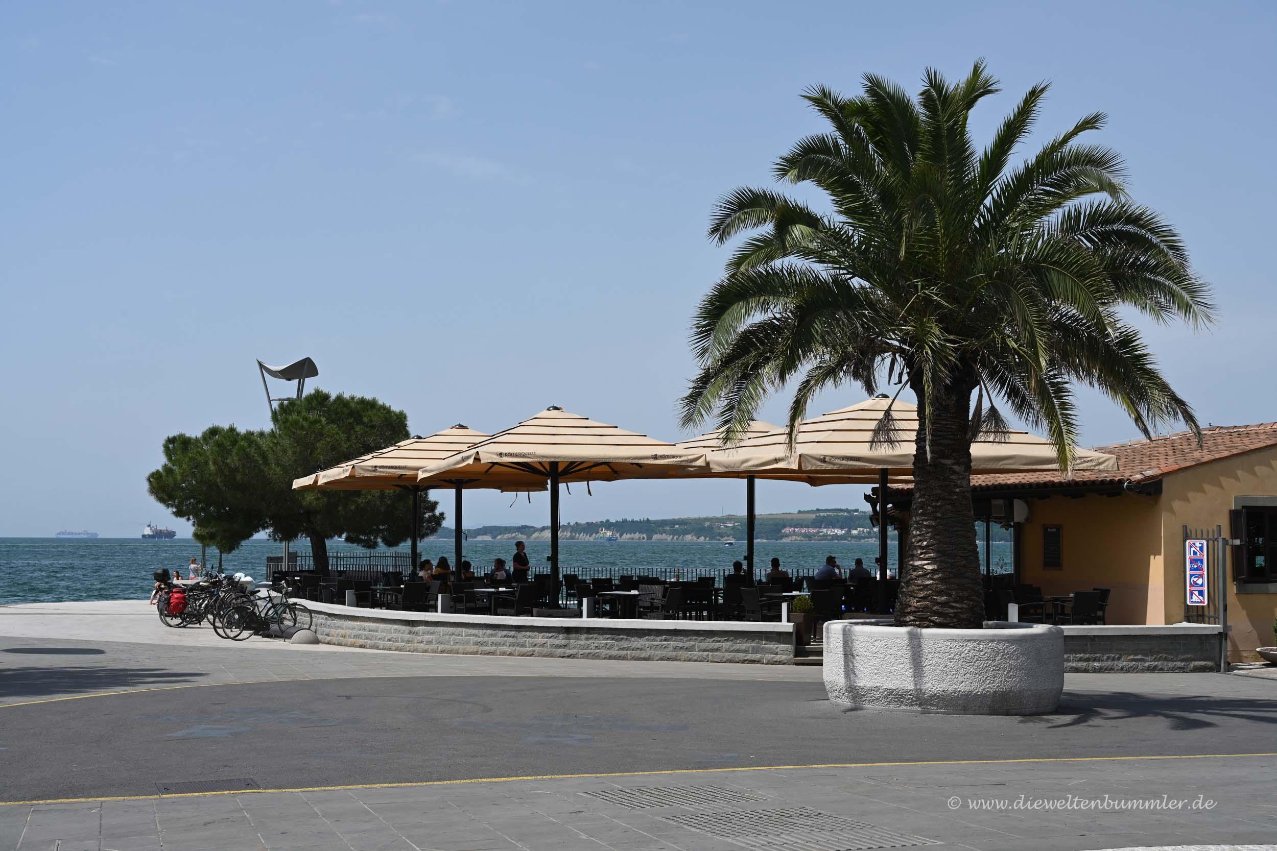 Mittelmeer in Koper